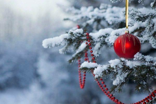 Путевки на декабрь в Белокуриху