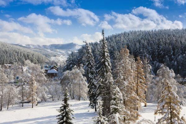 Зимние путевки в Белокуриху
