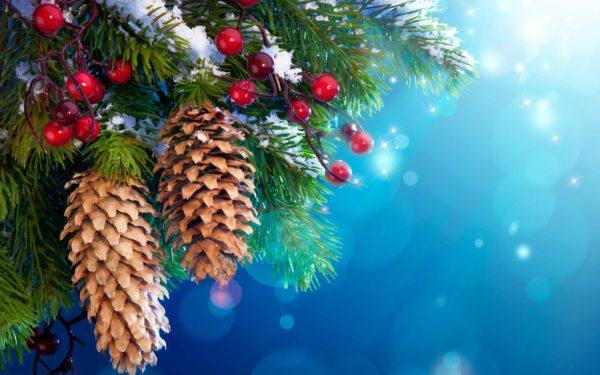 Встречайте «Новый год» в «Алтайском замке»!